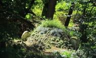 chambre-d-hote-Leclosdelagaede-jardin