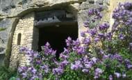 troglo et lilas (2)