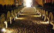 Cave Monplaisir - Chinon