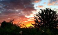 coucher-de-soleil-au-jardin