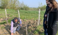 ACVL-CHINON-Loire-Winery-Tours--3-