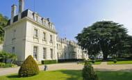 Façade + cèdre château de Rochecotte