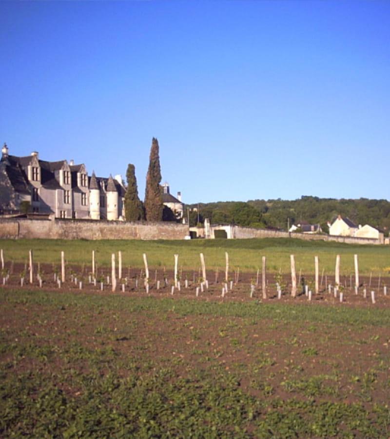 chateau-la_vauguyon01