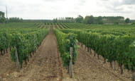 ACVL-Panzoult-Domaine d'Etilly (2)