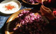 cuisine-safran-du-jardin