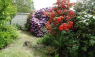 ACVL-BEAUMONT-EN-VERON-GITE-FROMENTAUX-13-Les-Rhododendrons