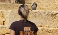 Rencontres-metiers---Bioparc---P