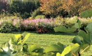 jardin-en-automne4